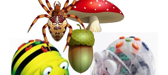 Ga al programmerend de herfst in met de Bee Bot!