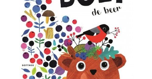 Stap het boek van Boet de Beer in!