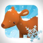 Ontdek het bongobos in de Winter!